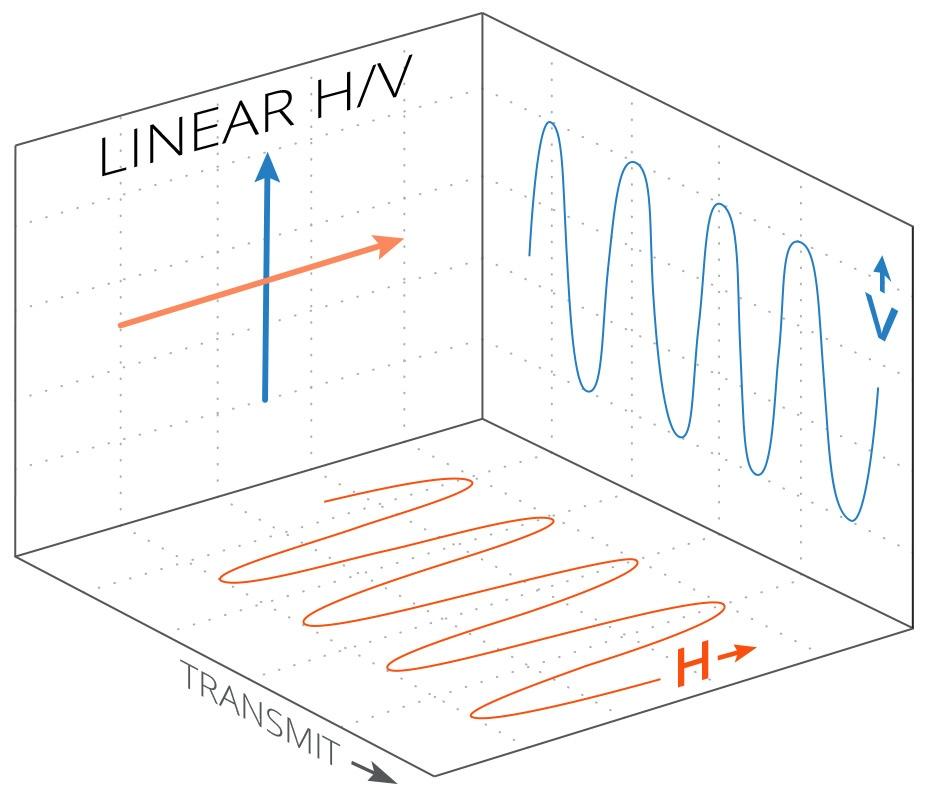1_linearpolarization.jpg#asset:124