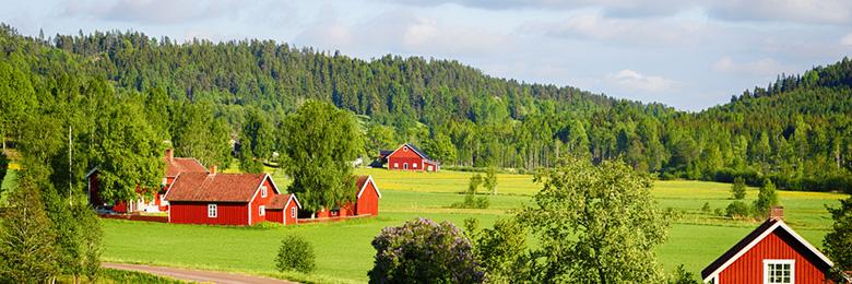 sweden.jpg#asset:479